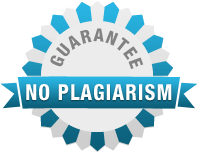 No Plagiarism Guarantee